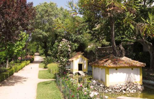 Jardim do Castelo em Abrantes - -Patos